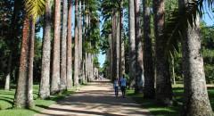 parques e jardins